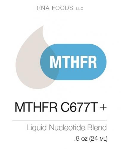 MTHFR C677T + .8 oz (24ml) - Holistic Health - SOI**