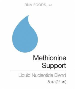 Methionine Support .8 oz (24ml) - Holistic Health - SOI**