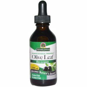 Olive Leaf, Alcohol-Free, 1,500 mg, 2 fl oz (60 ml) - Nature's Answer
