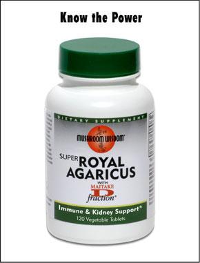 Super Royal Agaricus (Agaricus blazei Murill) 120 vtabs Mushroom Wisdom